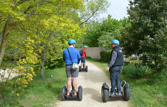 Mobilboard TM 9 - Coulon